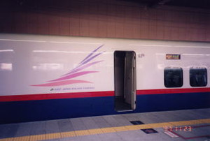 Shinsyu11