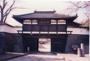 Shinsyu23