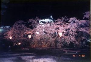 Tohoku33