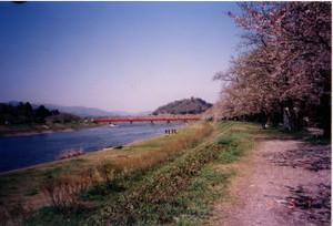 Tohoku41