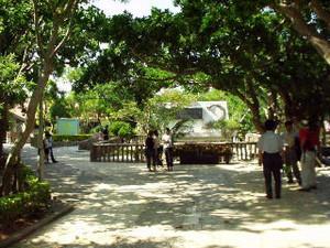 Okinawa22