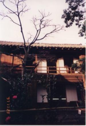 Shinsyu21